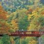 紅葉旅行におすすめ!定山渓温泉 花もみじ